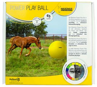 MAXIMUS Power Play Ball 65 cm